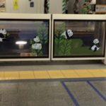 上野のパンダと新橋と