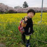 幸手権現堂桜堤と1000本桜と