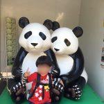 上野動物公園とパンダと