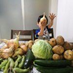 野菜と宅配と