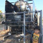 機関車と氷川中公園