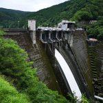 井川ダムとカブトムシと