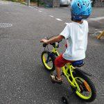 自転車とセミと