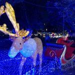 元渕江公園と光の祭典2019と
