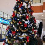 クリスマスツリーと巨大と