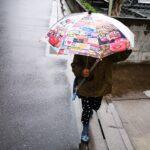 三寒四温の雨